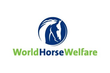 Petplan Charitable Trust announces new Covid-19 Equine Rescues Emergency Fund
