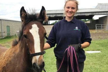 Buena's story – how our foals are cared for from birth to rehoming