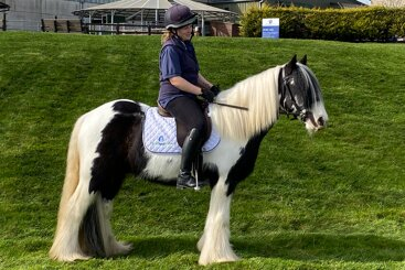 Pony who suffered horrific injury is now farm favourite
